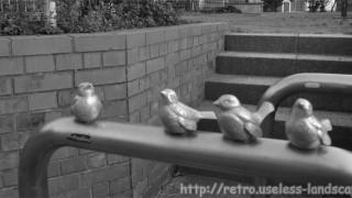 藤沢市 消えた小鳥の街