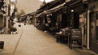 通称「カエルストリート」・ちょっと下町風味な縄手通り商店街